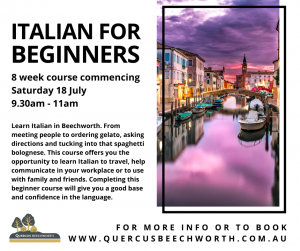 Italian for beginners @ Meeting room Quercus