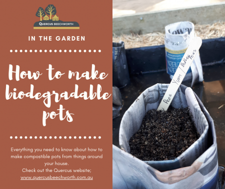 Make your own Biodegradable pots